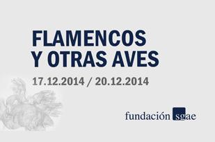 flamencos_y_otras_aves_destacado