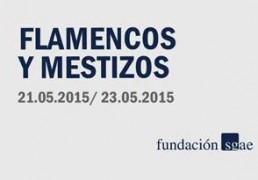 flamencos_y_mestizos_mayo_15