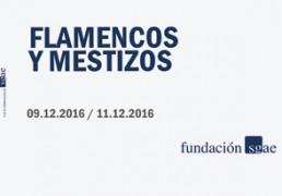 flamencos_y_mestizos_noviembre_16_portada