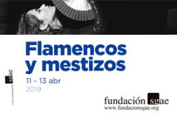 Flamencos_mestizos_abril_2019_t